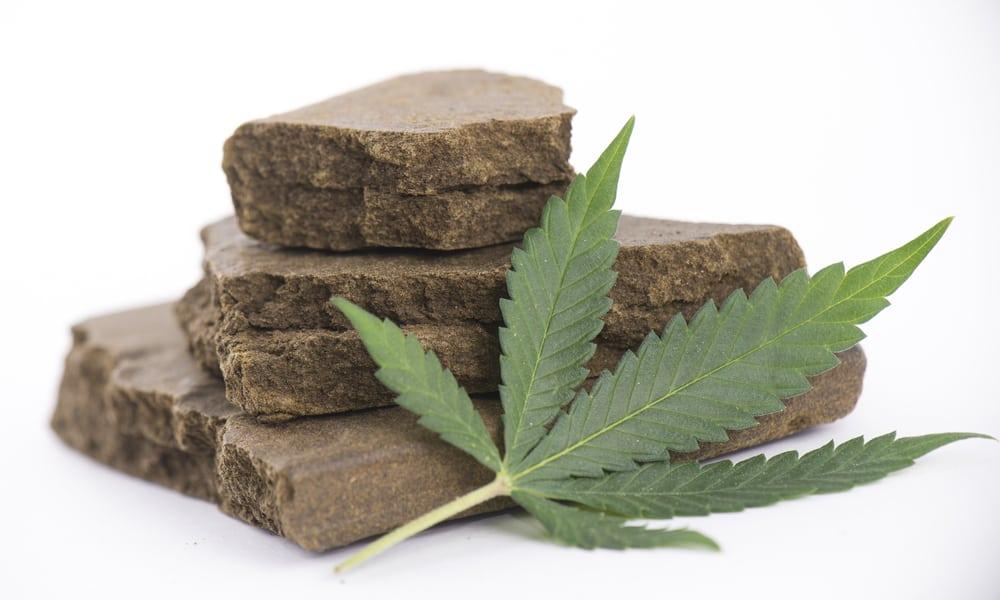 За сколько времени конопля выводится с крови марихуана листья вянут